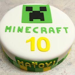 č.50 Kulatá větší Minecraft
